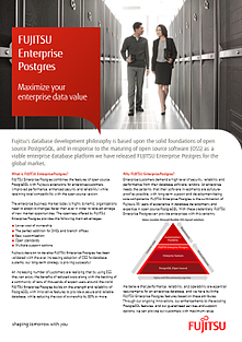 Brochure: Maximise you Enterprise Data Value