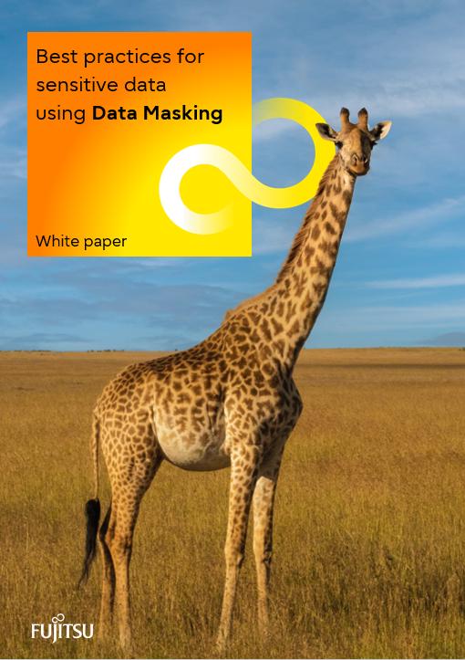 Data Masking white paper - FUJITSU Enterprise Postgres