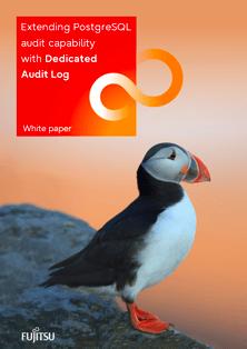 White paper: Dedicated Audit Log
