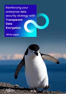 White paper: Transparent Data Encryption