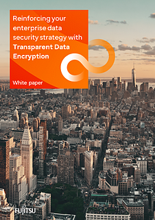 White paper: Transparent Data Encryption