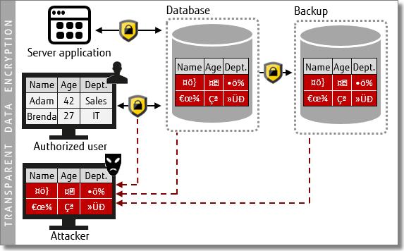 Diagram - Transparent data encryption