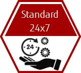 Support plan - Standard 24x7