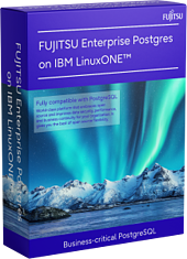 Mockup image: Software box