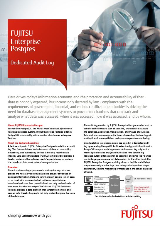 White paper: Dedicated Audit Log