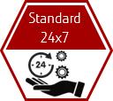 Standard 24x7 support plan